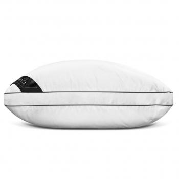 Caresse Premium Pillow