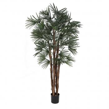Plastic Rhapis Palm 170 Cm