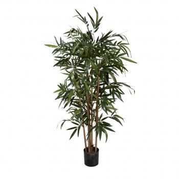 New Bamboo Tree – 210 Cm