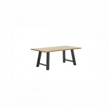 Zeus Dining Table 180×100 – Carbon Black / Teak Look / X-style